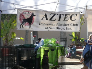 Public Education at the Pet Expo
