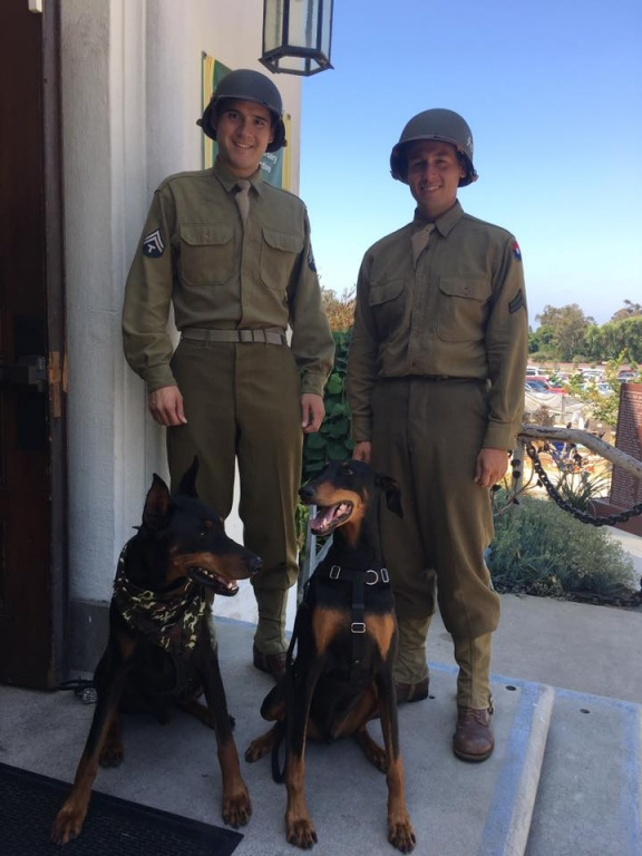Dobies and Soldiers